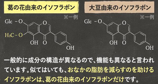 イソフラボン構造の違い