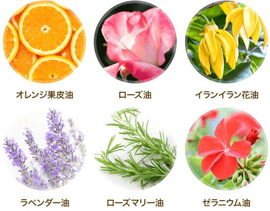 6つの天然アロマ