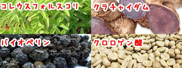 4種の植物成分
