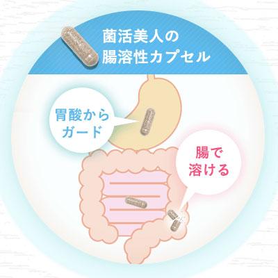 胃酸からガード