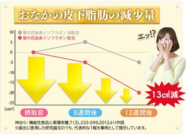 皮下脂肪の減少量