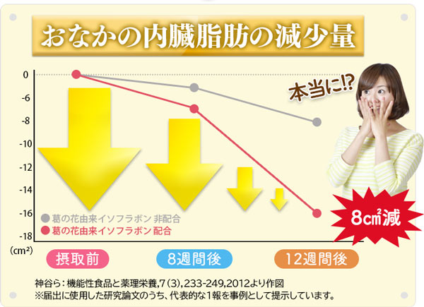 内臓脂肪の減少量