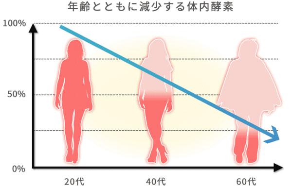 年齢と共に減少する体内酵素