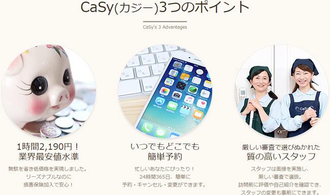 カジー(CaSy)の特徴