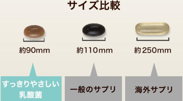 粒の大きさ比較