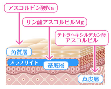 3種類のビタミンC