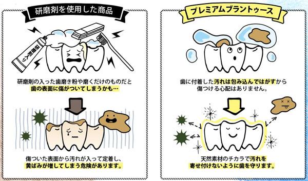 歯磨き粉との違い
