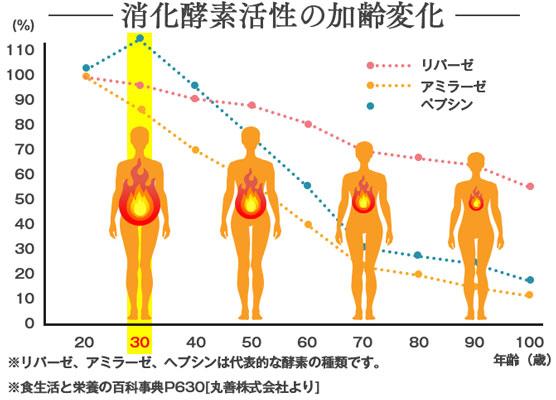 体内の酵素量と年齢